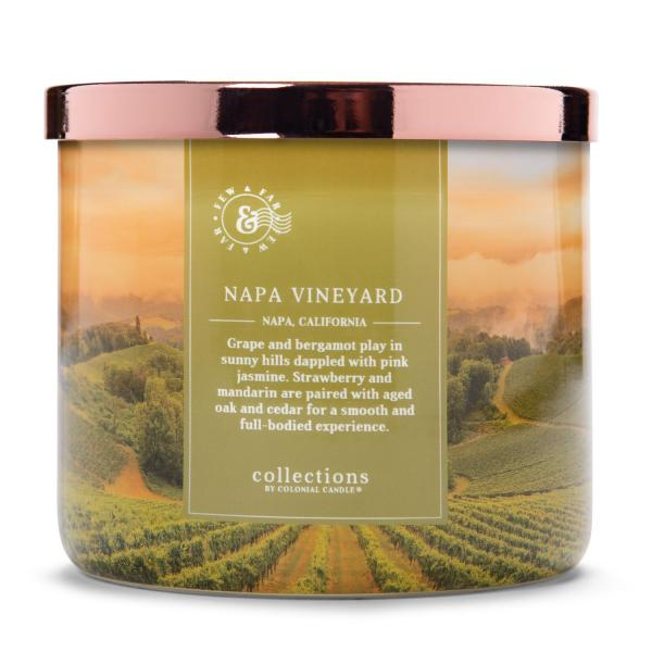 Colonial Candle - Mittlere Duftkerze im Glas - Travel Collection - Napa Vineyard