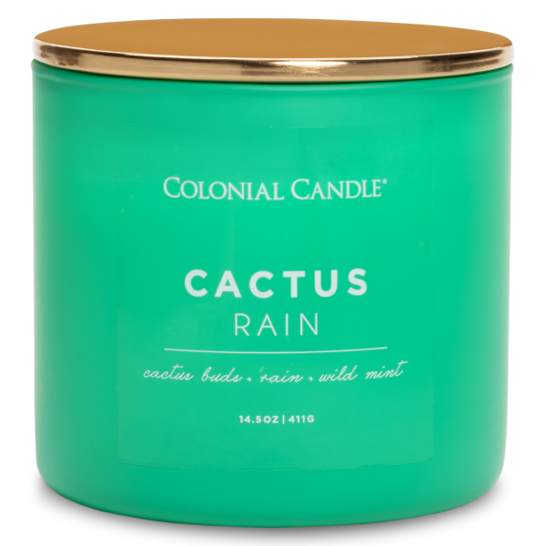 Colonial Candle - Mittlere Duftkerze im Glas - Pop of Color - Cactus Rain
