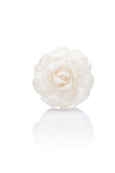Vogel Frei - Diffusing Flower - Duftblume - Rose - Natur