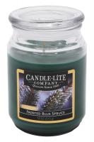 Candle-Lite Company - Große Duftkerze im Glas - Frosted Blue Spruce