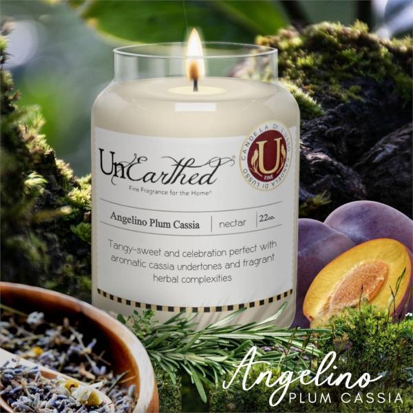 Candleberry - Duftkerze im Glas - Angelino Plum Cassia