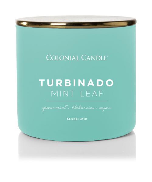 Colonial Candle - Mittlere Duftkerze im Glas - Pop of Color - Turbinado Mint Leaf